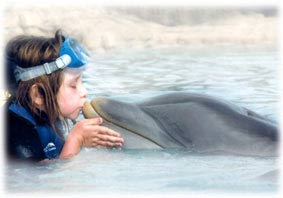 Lauren and Dolphin